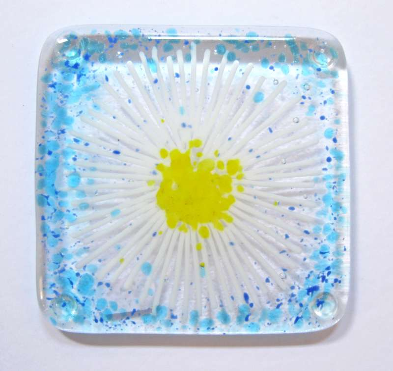 Blue Daisy Coaster