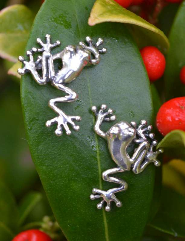 Tree Frog Stud Earrings