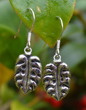 Cheese Plant Drop Earrings