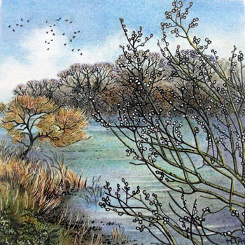 Rooks by the River