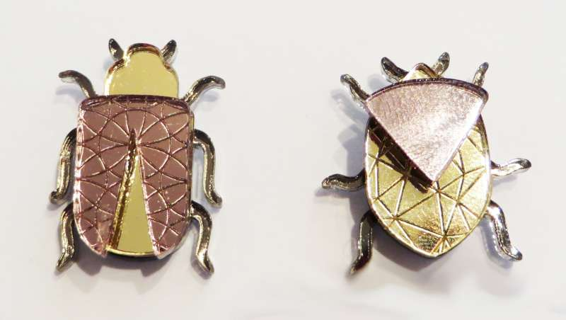 Insect Pin Set